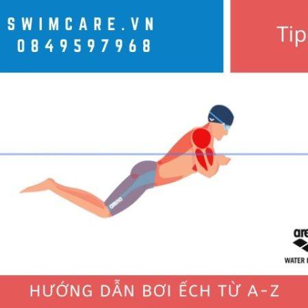 Hướng dẫn bơi ếch từ A-Z cho người mới bắt đầu