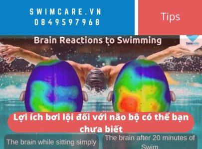 Lợi ích bơi lội đối với não bộ có thể bạn chưa biết